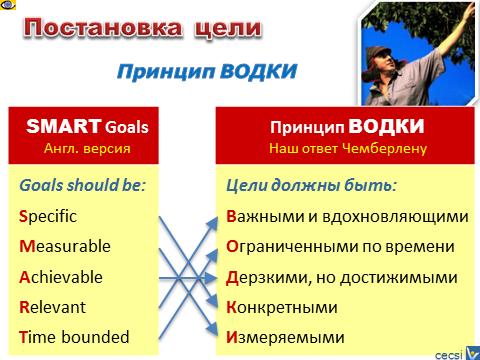 принципы цели: